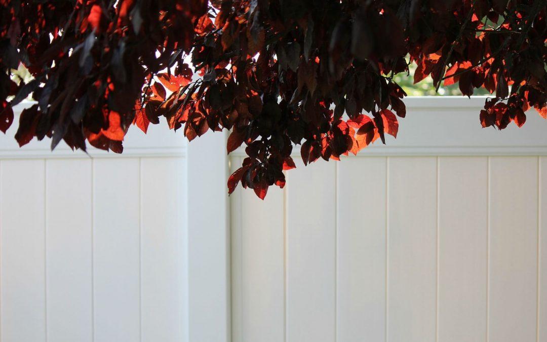 Building Vinyl Fences – Stunning, Safe and Secure